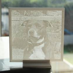 3D Photo - Lithophane Flat